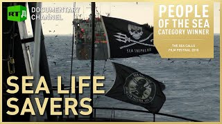 Download Sea Life Savers: Illegal fishing off Gabon challenged by Sea Shepherd Video