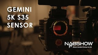 Download REDs New Gemini 5K S35 Sensor | NAB 2018 Video