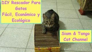 Download Como Hacer Un Rascador Casero Para Gatos, Fácil, Económico y Ecológico (DIY) Video