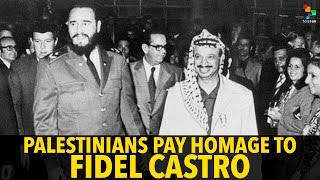 Download Palestinians Pay Homage to Fidel Castro Video