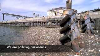 Download Human Impact on the World HD Video