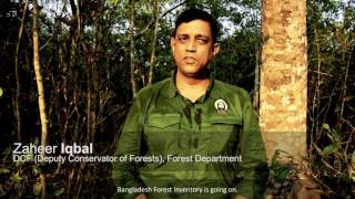 Download Bangladesh Forest Inventory Video