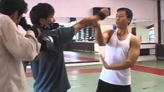 Download Donnie Yen Style of Action Video
