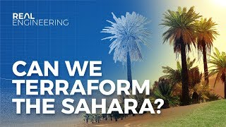 Download Can We Terraform the Sahara to Stop Climate Change? Video