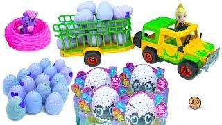 Download Truck Of Hatchimals Hatching Surprise Blind Bag Baby Animal Eggs with Queen Elsa Video