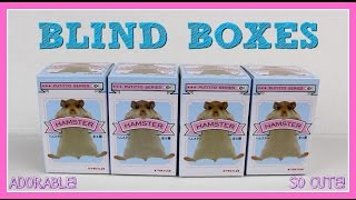 Download HAMSTER BLIND BOXES - SO CUTE!!! Video