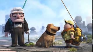 Download talking doge Video