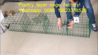 Download How to install poultry layer cage /You are sure to get factory price here. Video