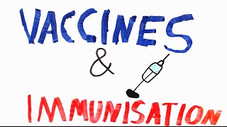 Download Immunisation | How do vaccines work? Video