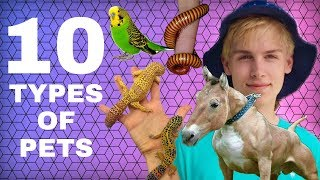 Download Feeding 10 Types of Animals! (EXOTIC PETS) Video