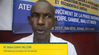 Download Interview of M. Baba Galleh JALLOW, FAO National consultant for The Gambia Video