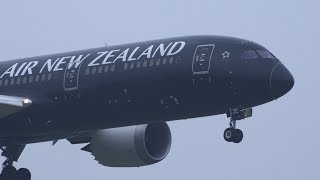 Download Air New Zealand Boeing 787-9 ZK-NZE Landing at NRT 16R Video