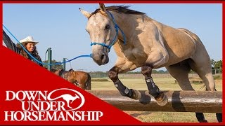 Download Clinton Anderson: What is the correct way to put on Legacy Boots? - Downunder Horsemanship Video