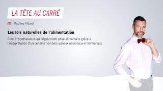 Download VIDÉO - Regardez France Inter en direct Video