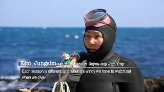 Download Culture of Jeju Haenyeo (women divers) Video