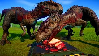 Download 2 Indominus Rex vs 2 Spinosaurus, 2 Indoraptor, 2 Giganotosaurus, 2 Allosaurus - Dinosaurs Fighting Video