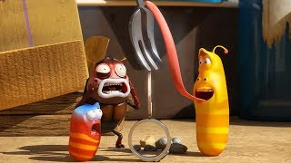 Download LARVA - BALANCE | Cartoon Movie | Cartoons For Children | Larva Cartoon | LARVA Official Video