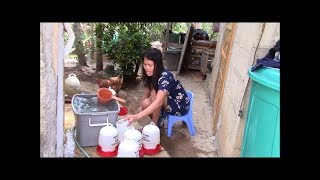 Download Does Marife Whistle While She Works Not Quite And Saves Coins Philippines Expat Foreigner Video