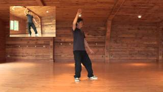 Download Tai Chi Form: 5 - Lifting Hands, Shoulder Stroke, White Crane Spreads Wings Video
