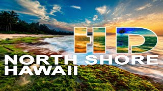 Download NORTH SHORE | OAHU / HAWAII , UNITED STATES - A TRAVEL TOUR - HD 1080P Video