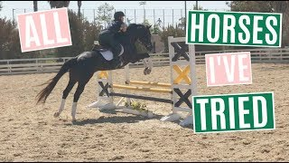 Download All Of The Horses I Have Tried | Horse Shopping Video