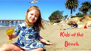 Download KIDS ON THE BEACH PLAYING IN CALIFORNIA | Our Candid Kids Video