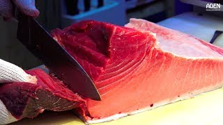 Download Tuna Sashimi - Japanese Street Food Video