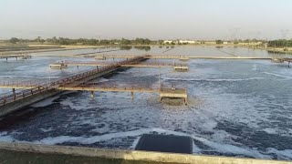 Download Namami Gange projects restrict Kanpur's sewage flow into Ganga Video