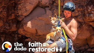 Download Guy Rappels Into Canyon To Save Abandoned Dogs | The Dodo Faith = Restored Video