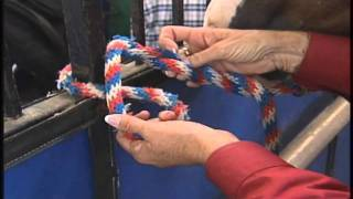 Download How to tie your horse safely and securely Video