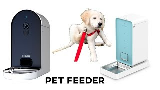 Download DOGNESS AND PETKIT: STATE OF THE ART PET FEEDERS FOR YOUR CAT OR DOG Video