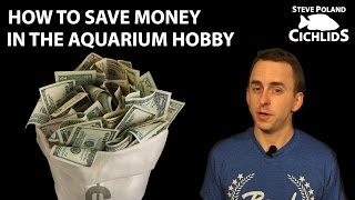 Download How to Save Money in the Aquarium Hobby Video