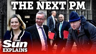 Download The next Brexit PM: who takes over if May resigns? Video