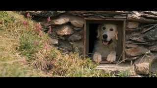 Download Belle and Sébastien / Belle et Sébastien (2013) - Trailer English Subs Video