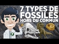 Download 7 types de fossiles hors du commun Video