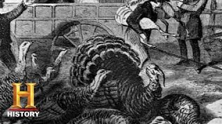 Download History of the Holidays: History of Thanksgiving | History Video