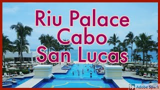 Download Welcome to the Hotel Riu Palace Cabo San Lucas Video