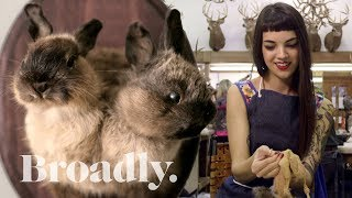 Download The Young Taxidermist Giving New Life to Dead Animals Video