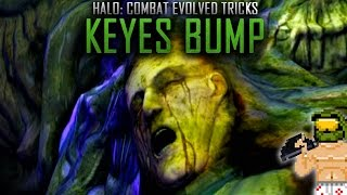 Download Halo Tricks: The Infamous Keyes Bump Video