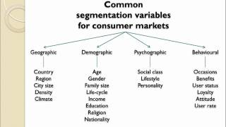 Download Market Segmentation Introduction Video