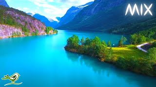 Download Beautiful Relaxing Music with No Loops - Stunning Nature & Calm Music Video
