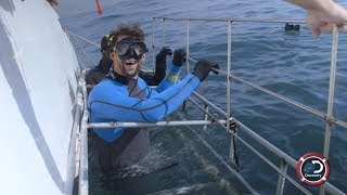 Download Michael Phelps Close Encounter | Shark Week Video