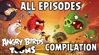 Download Angry Birds Toons Compilation | Season 1 All Episodes Mashup Video