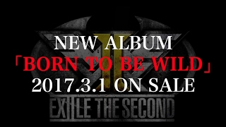 Download EXILE THE SECOND / 【アルバム全曲紹介】 NEW ALBUM「BORN TO BE WILD」 Video