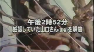 Download 三菱銀行事件 1/2 Video