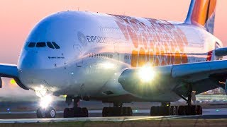 Download 6 MORNING TREATS   A380 A350 B777 A330   Melbourne Airport Plane Spotting Video