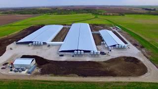 Download Sandy Creek Lane - Sow Farm Tour Video