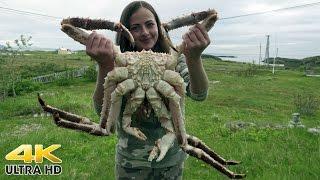 Download Rybolov na Soroya - Lov kamčatských krabů Video
