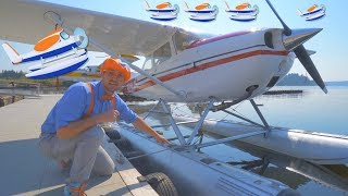 Download Blippi Flies a Seaplane   Airplanes for Kids and Fun Songs for Toddlers Video