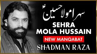Download Manqabat 2011 l Shadman Raza l Sehra Mola Hussain (AS) Video